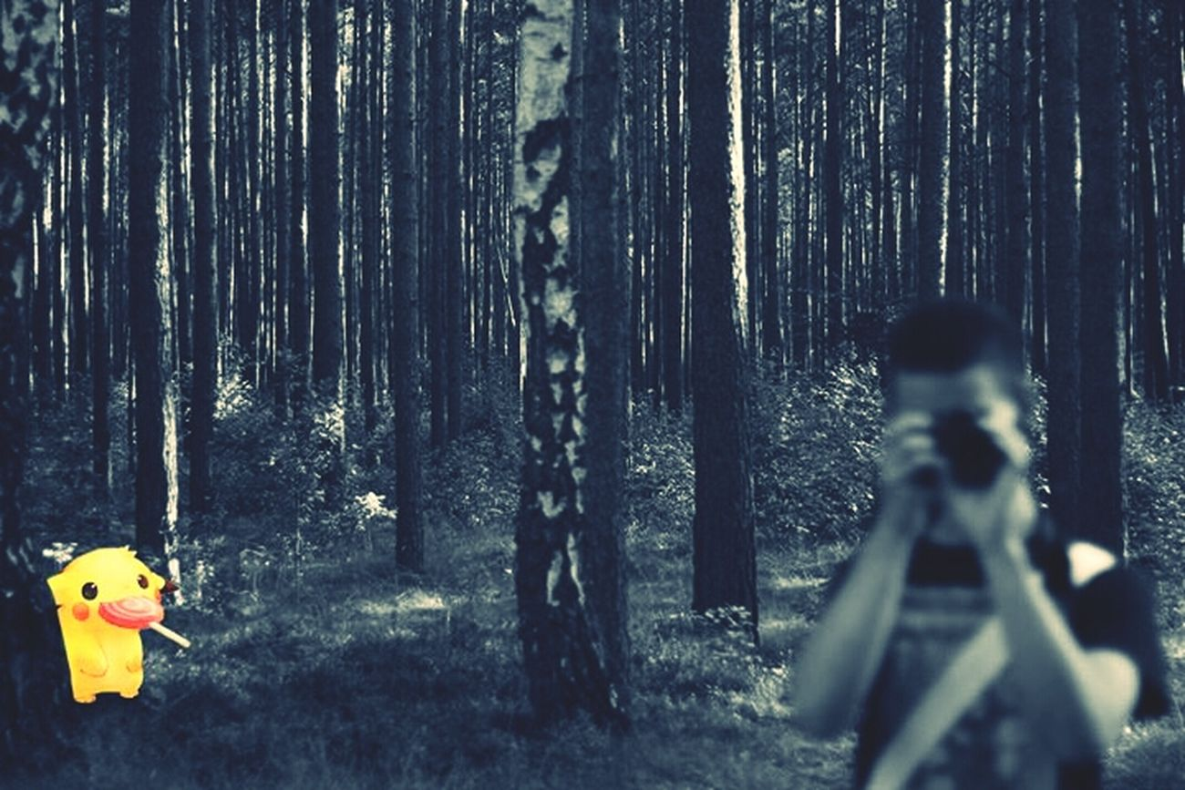 Photoshop? I think not . Forest, Wild Pikachu, Canon, Brandenburg Germany