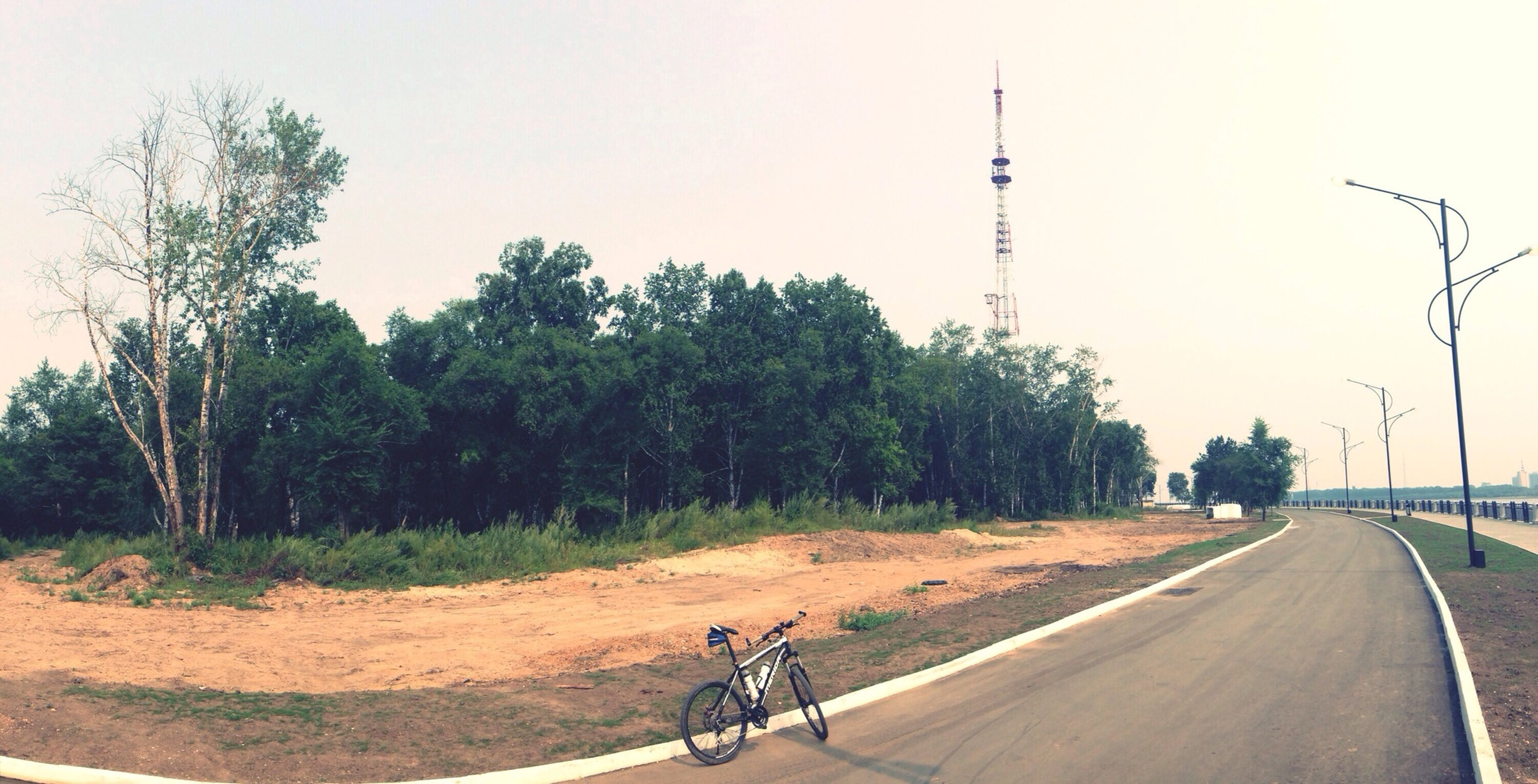transportation, the way forward, tree, road, clear sky, bicycle, diminishing perspective, copy space, vanishing point, street, land vehicle, country road, street light, mode of transport, tranquility, road marking, sky, tranquil scene, nature, outdoors