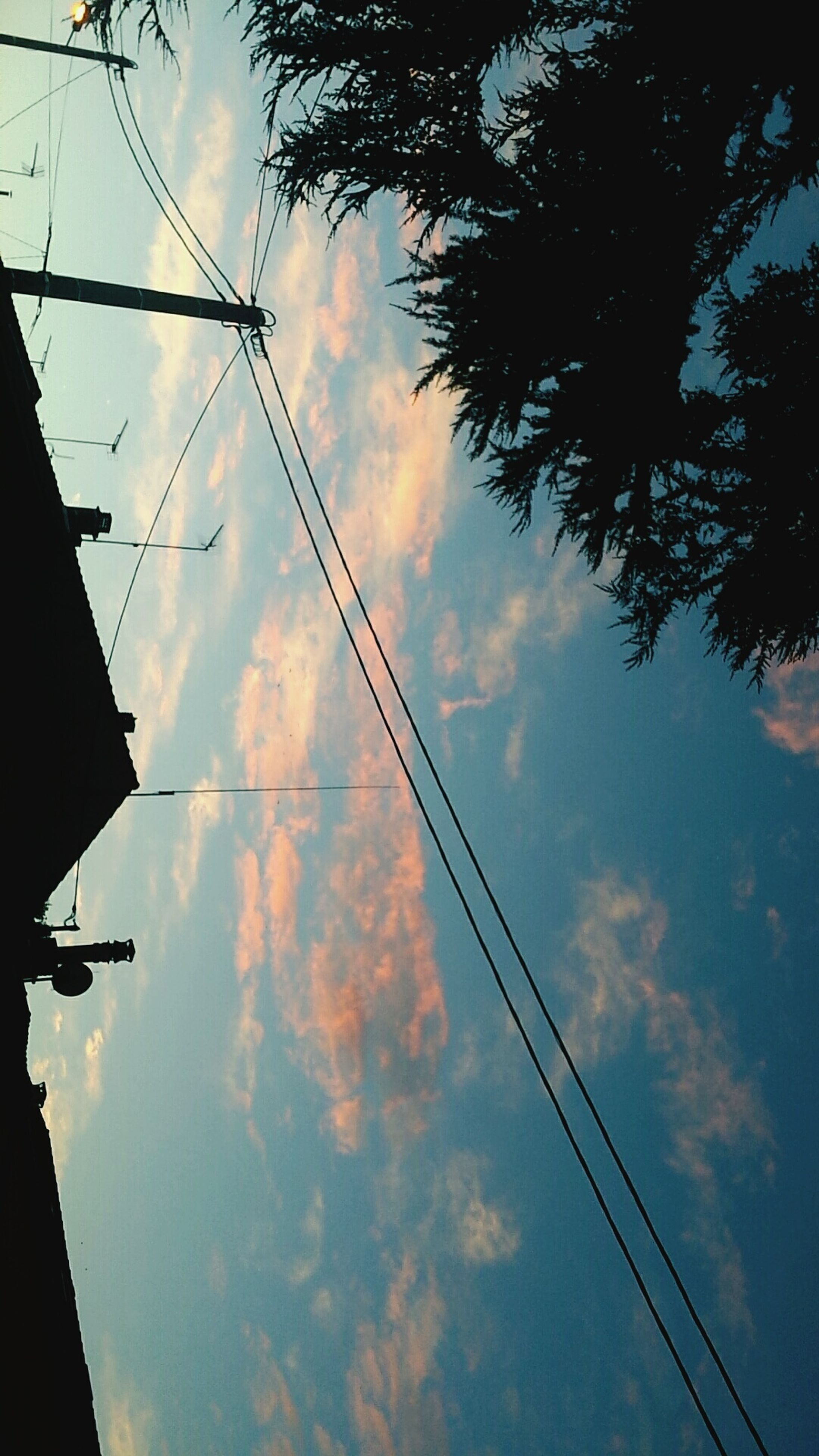 power line, low angle view, sky, electricity pylon, cable, electricity, power supply, connection, cloud - sky, silhouette, fuel and power generation, power cable, technology, cloudy, cloud, sunset, tree, built structure, outdoors, no people