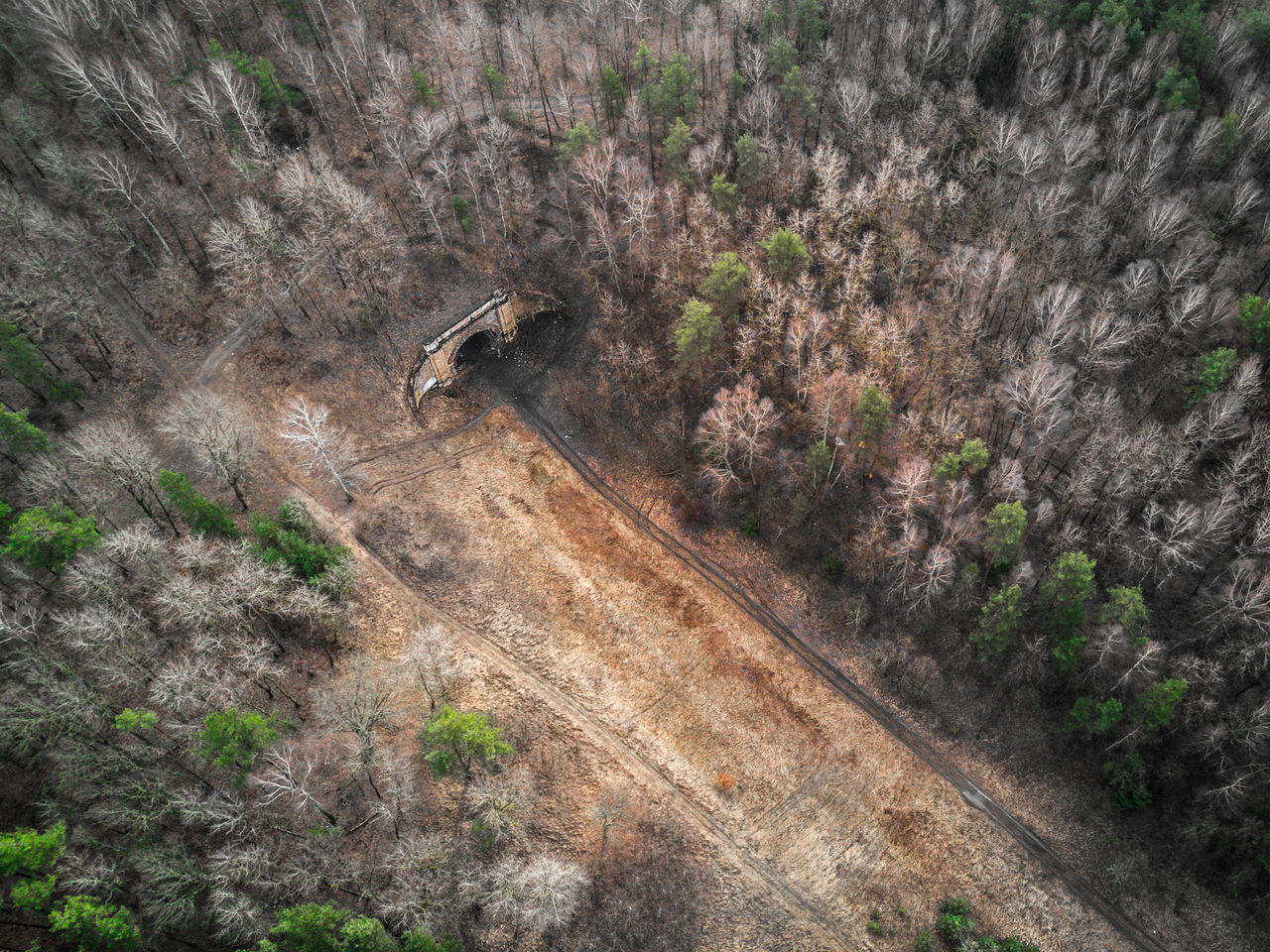 Abandoned and old railway tunnel - aerial shot from Dji mavic pro in forest / Paneriu tunelis Abandoned Aerial Shot Aerial View Architecture Beauty In Nature Building Closed Dangerous Dji DJI Mavic Pro Drone  Dronephotography Forest High Angle View Landscape Landscape_Collection Mavic Mavic Pro Nature Old Paneriu Tunelis Railway Road Tree Tunnel
