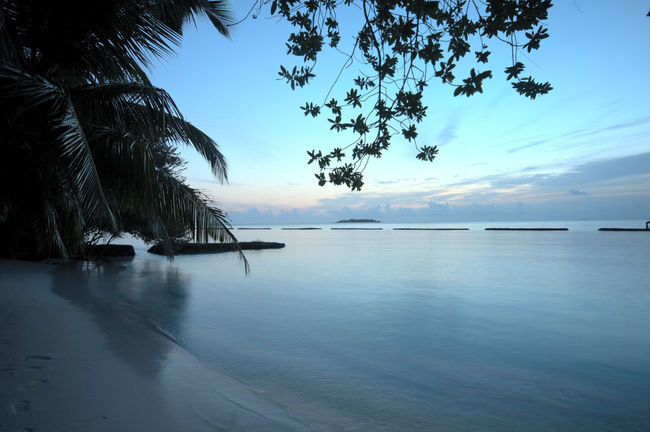 Beach Break Breakfast Calm Coastline Distant Horizon Over Water Lake Maldives Ocean Outdoors Reflection Rippled Sand Sea Sea Wall Shore Tranquil Scene Tranquility Tropical Climate Vacations Water