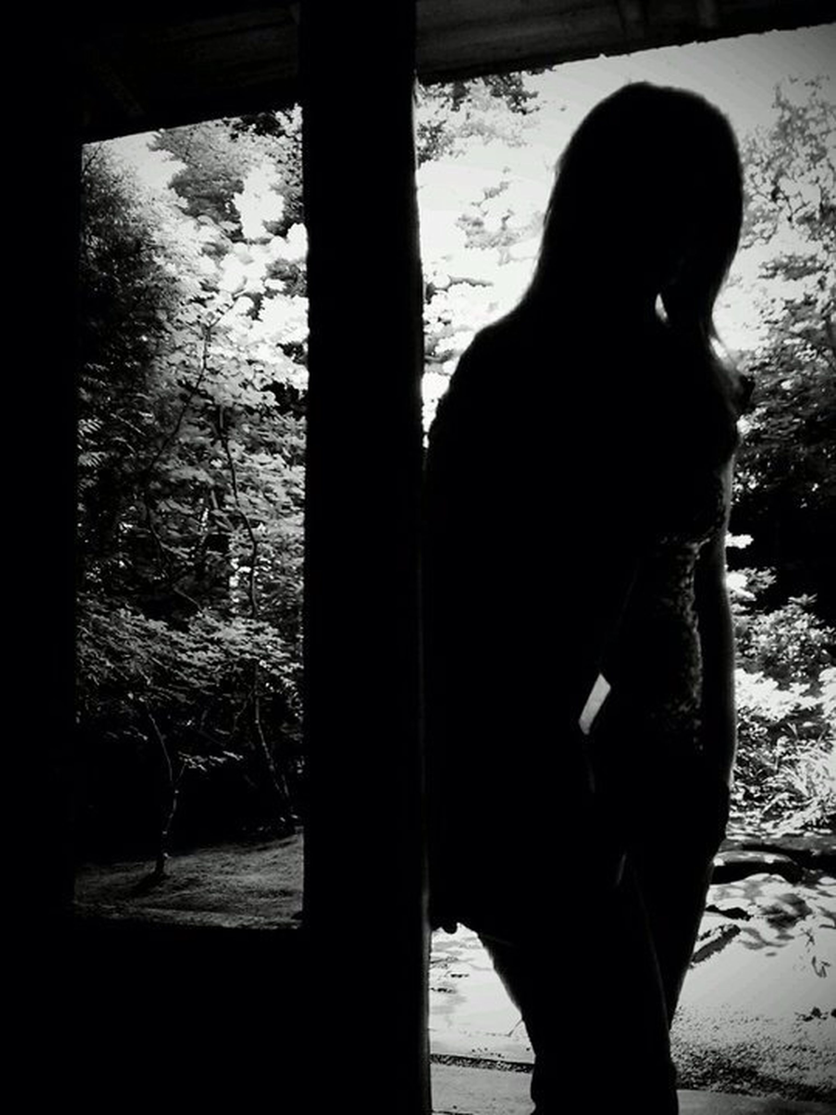 silhouette, standing, lifestyles, rear view, shadow, sunlight, side view, indoors, leisure activity, men, three quarter length, tree, day, full length, tree trunk, person, holding
