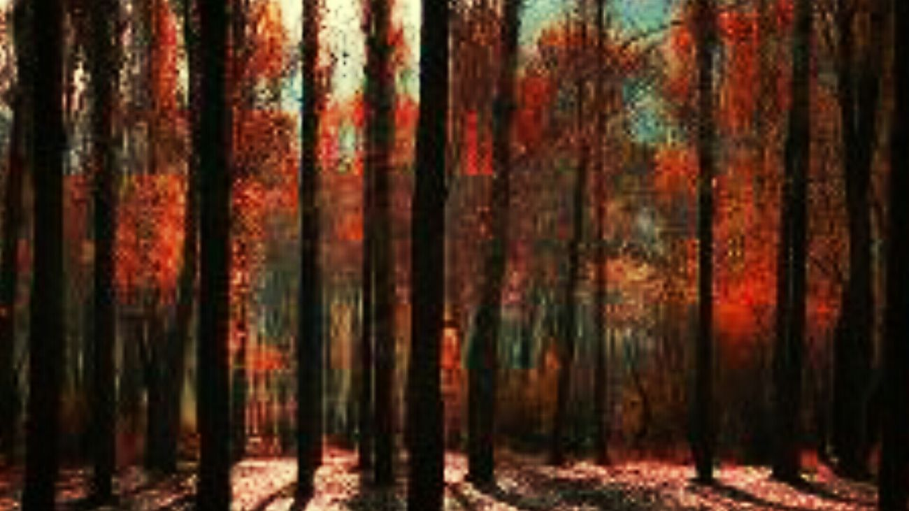 Autumnal Dreams First Eyeem Photo