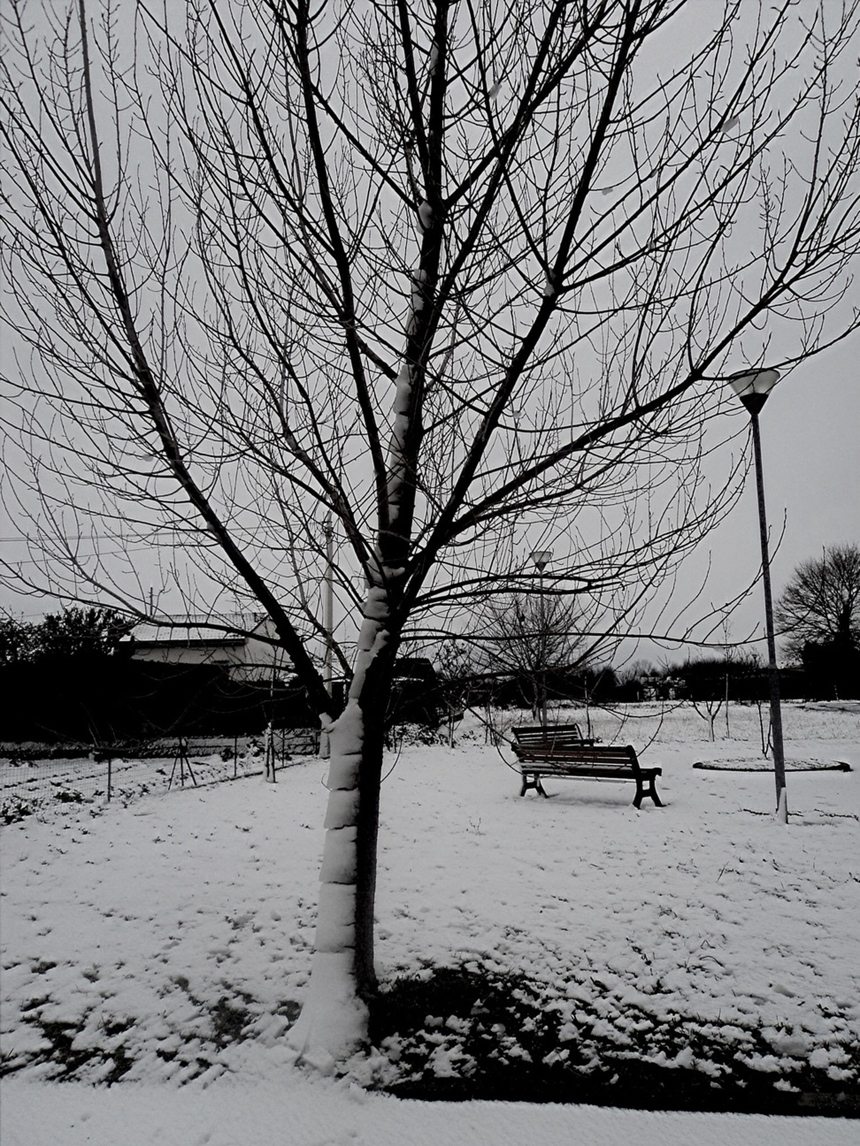 bare tree, tree, branch, season, water, tranquility, nature, sky, tranquil scene, tree trunk, winter, scenics, beauty in nature, built structure, cold temperature, outdoors, bench, snow, silhouette, day