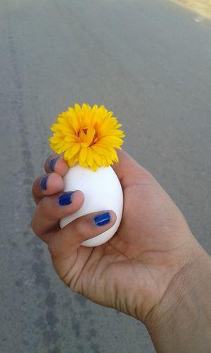 Un Huevoy una Flor jajaja que simpleza.