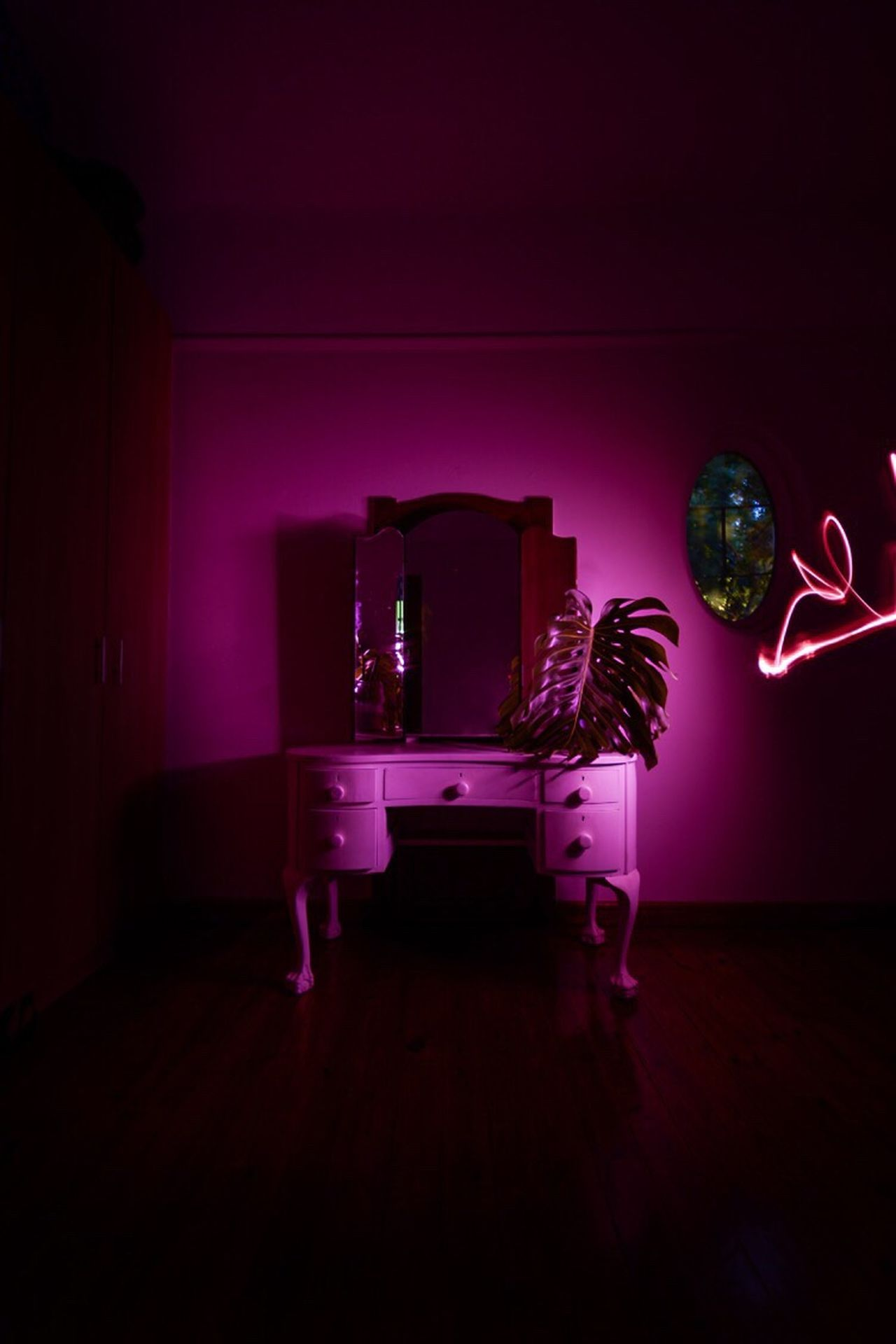 Deliciousmonster Plant Neon Lifestyle Pink Dressingtable Lightpainting