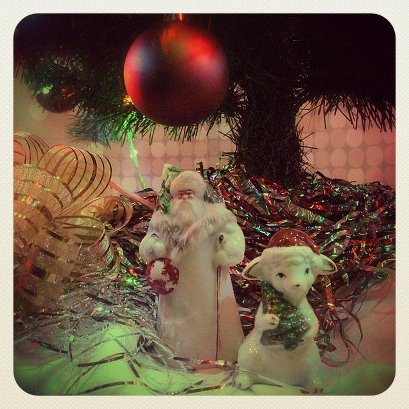 NewYear Newyearday Christmas Christmastree Ded_moroz Yearofsheep новыйгод рождество годовцы дедмороз