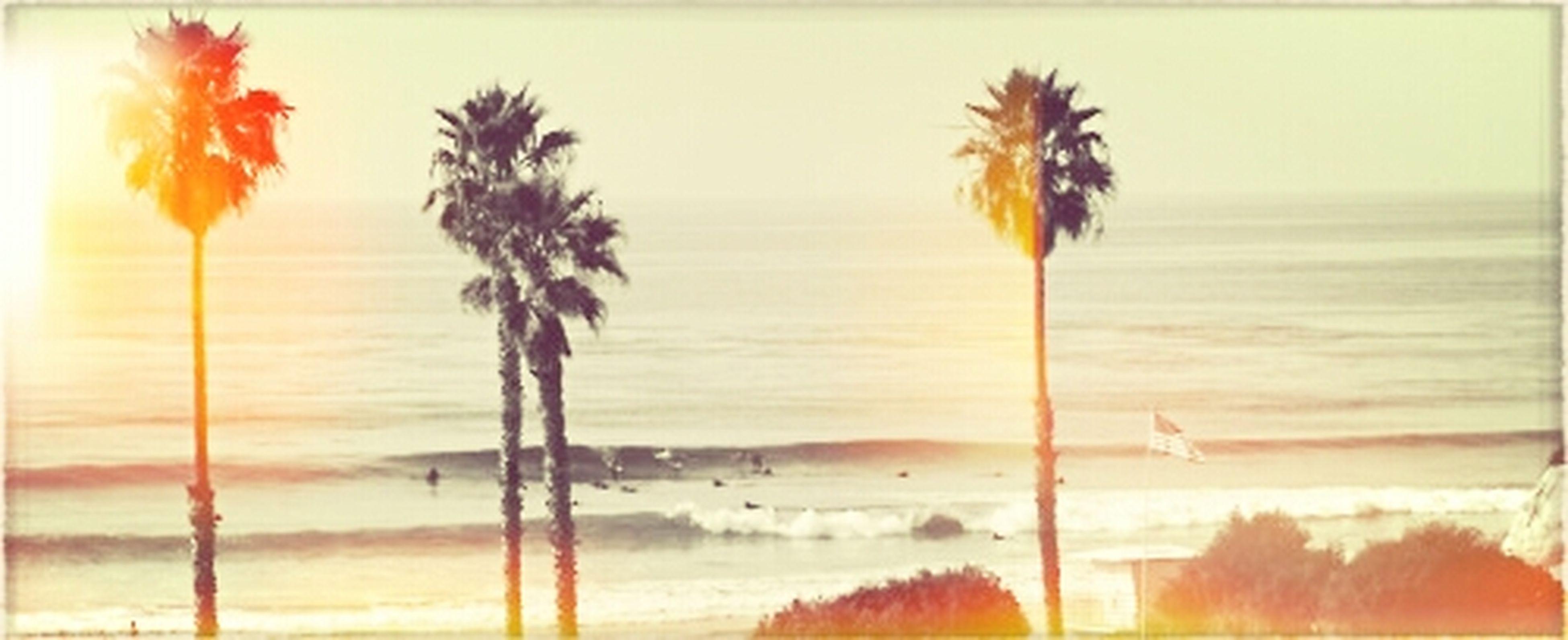California! Im Coming Home