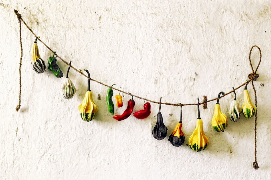 Beautiful stock photos of vegetables,  Chili,  Choice,  Day,  Decoration