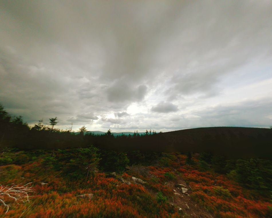 Nature_collection Landscape_photography Izery Mountains Naturephotography Clouds And Sky