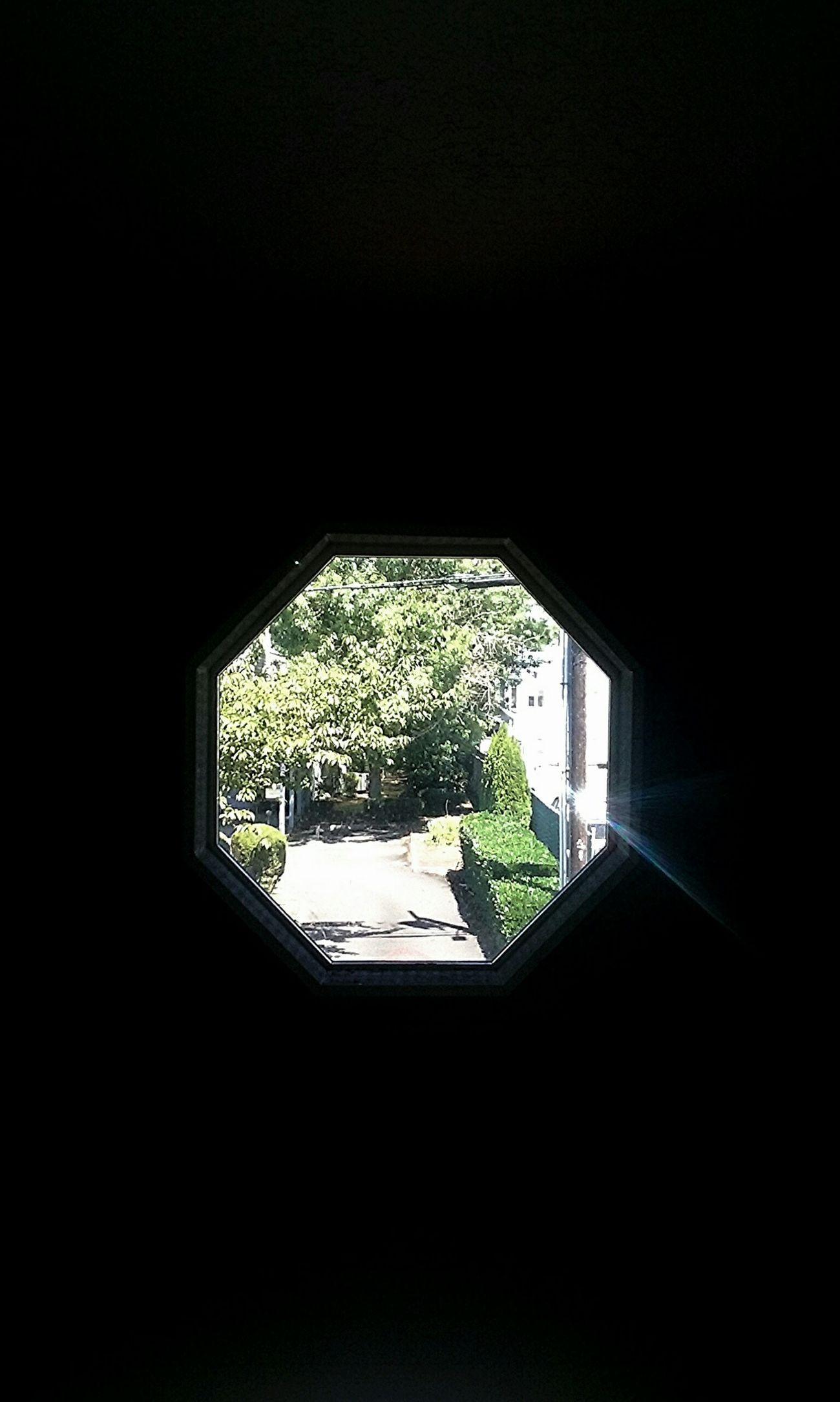 ¿=♡ PortlandOregon Snakehole