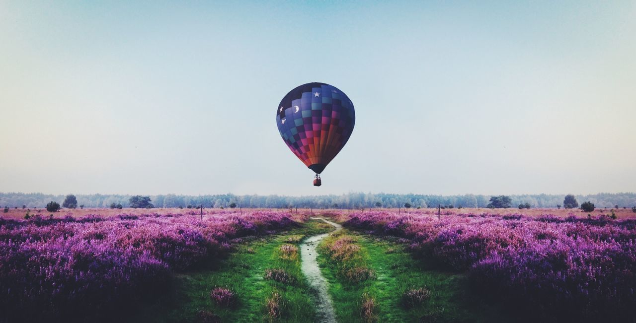 Beautiful stock photos of balloon, Agriculture, Air Vehicle, Beauty In Nature, Copy Space