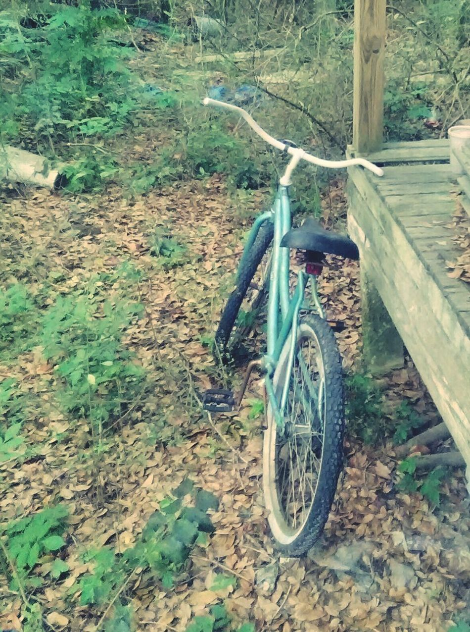 Bicycle Mode Of Transport Outdoors Nature Grass Day Abandoned House Vintage Shapes In Nature  Tranquility Element Nature Edges Rustic Charm Character Architecture House Growth Still Life Shape Abstract Photography Abundance Textured  High Angle View
