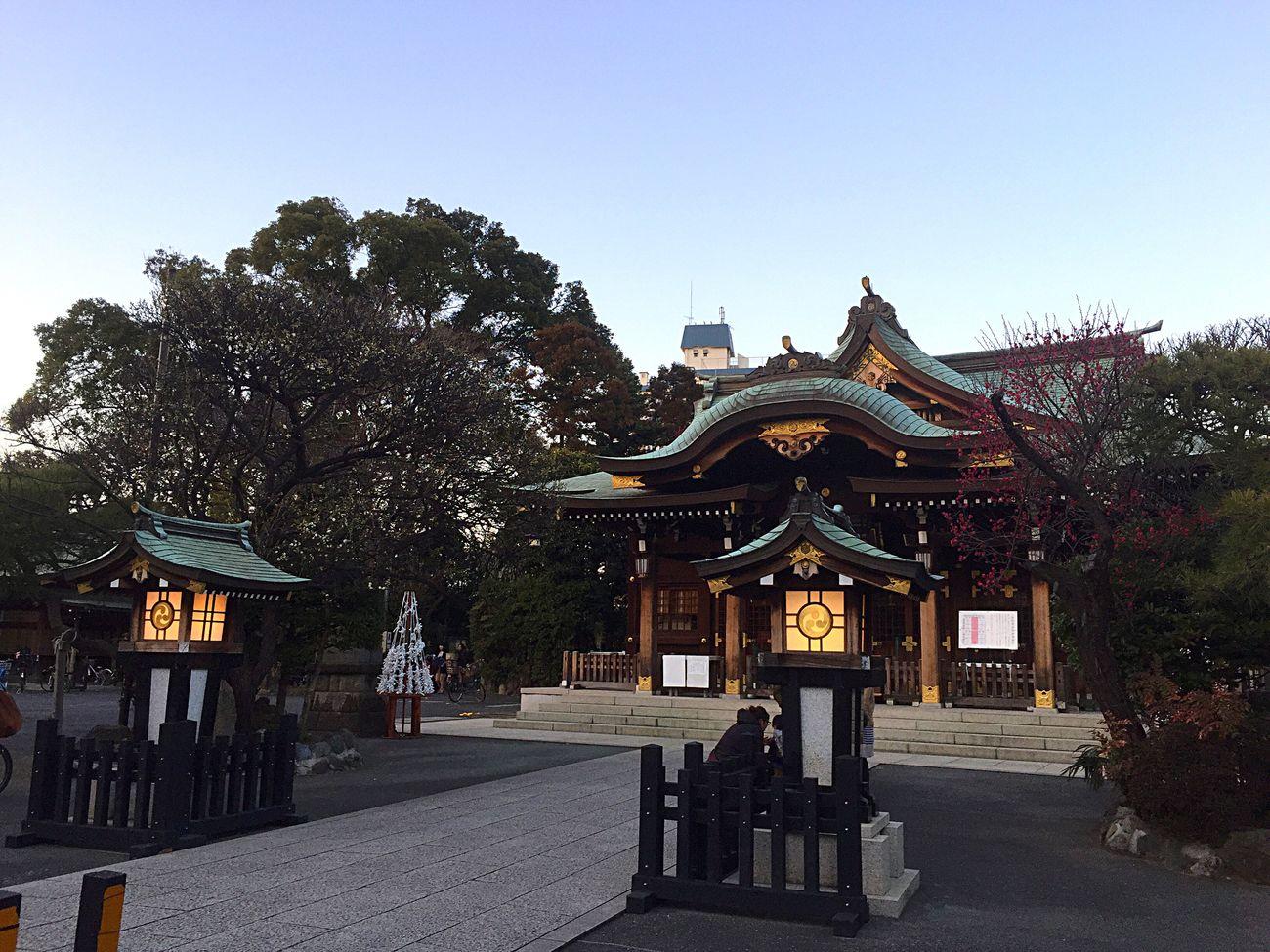 神社 空 Shrine Sky