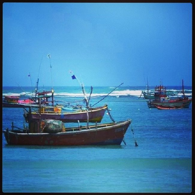 Fishing boats in Sri Lanka Iamsrilanka EarthInstagram Allshots_ SriLanka srilankatailormade nature ocean fishing