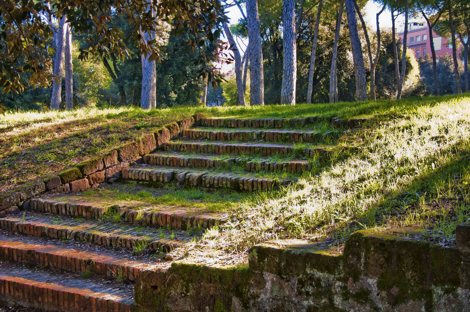 Villa Borghese Green Color No People Outdoors Rome Stairs Tranquil Scene Tranquility Tree Villa Borghese Villa Borghese Park