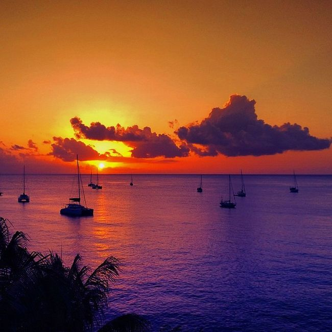 Shutterbug_collective Splendid_sunsets Splendid_earth Splendid_earth Stunning_shot Sky_painters Starwinners Caribbean_beautiful_landscapes Cool_sunshotz Sunsetsareonme Westindies_pictures Ilivewhereyouvacation Insta_sky_reflection Grenada GOLDENCLiCKS Theworld_thru_youreyes Thebestpicsoftheearth Theblueislands Exploringtheglobe Earth_captures