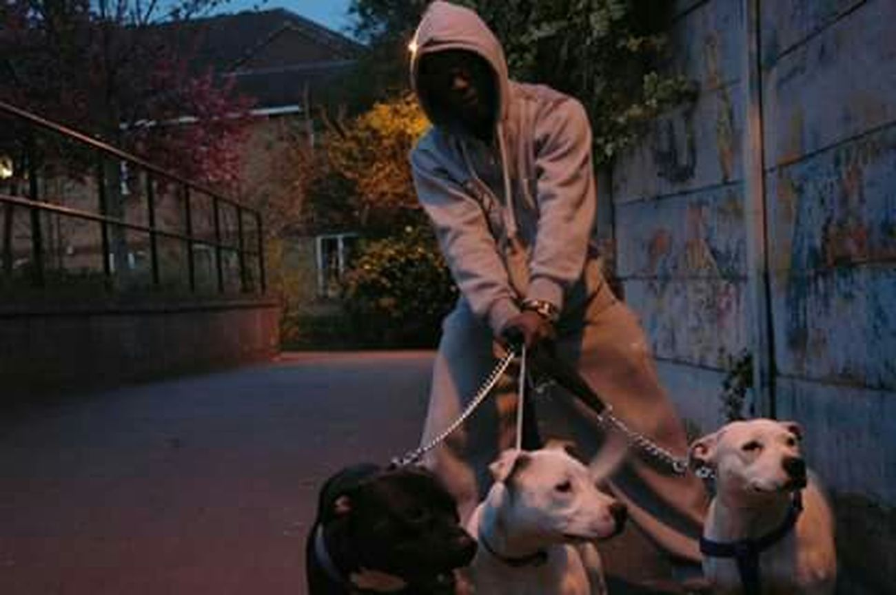 Animal First Eyeem Photo Adults Only The Portraitist - 2017 EyeEm Awards Day Portrait Danger Outdoors One Man Only Dogs Dogs Of EyeEm Dogslife Gangsters Paradise GTA Mafia