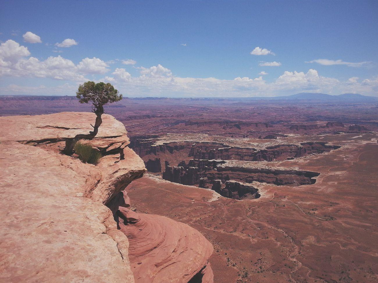 Beautiful stock photos of grand canyon, Barren, Beauty In Nature, Canyon, Cloud
