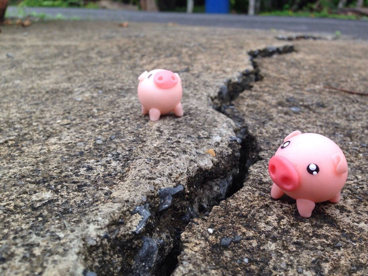 Separation Far Barrier Piggy Piggy Bank Piggybank Piggy♥ Eathquake Focus On Foreground Childhood Piggy Bank Close-up No People Pink Color Eggshell Outdoors Day Savings Millennial Pink