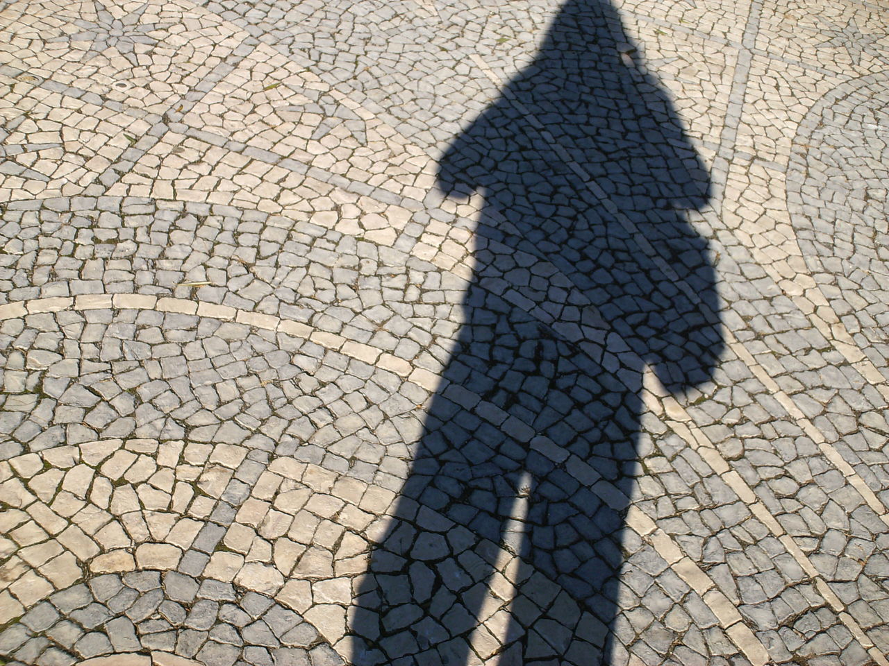 Beautiful Shadow Calçada Portuguesa Cobblestone Day Detail From Lisbon Focus On Shadow High Angle View Lights And Shadows Lisbon Lisbon - Portugal Mammal Nature Outdoors Portuguese Streetphotography Real People Several Shades Of Gray Shadow Shadow Of A Woman Shadow On The Ground Shadows And Lights Street Photography Sunlight Sunny Day And A Shadow Textured  Woman Walking