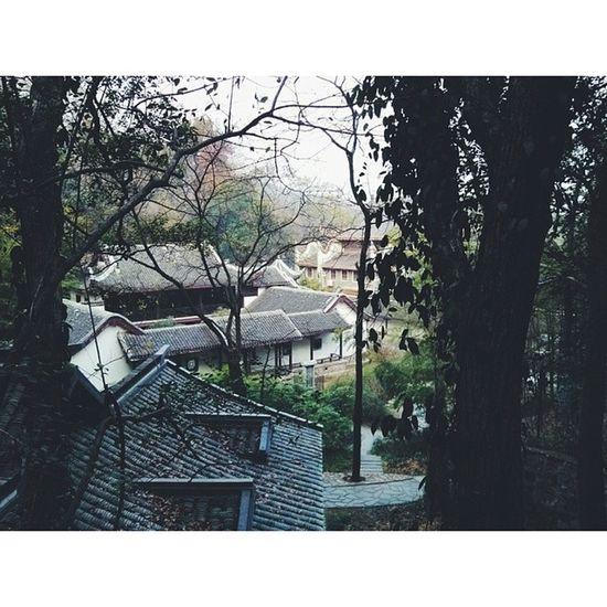 岳麓书院 岳麓山 Changsha Hunan 长沙 湖南 vsco vscocam