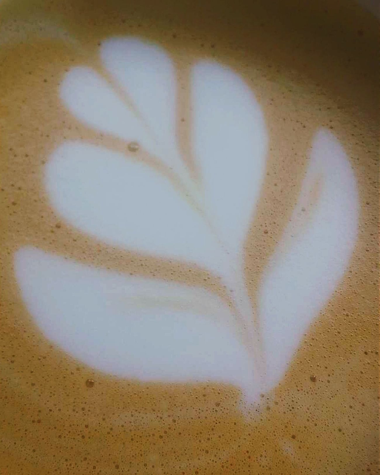 ☕ Latte Latteart Boldbean Coffee