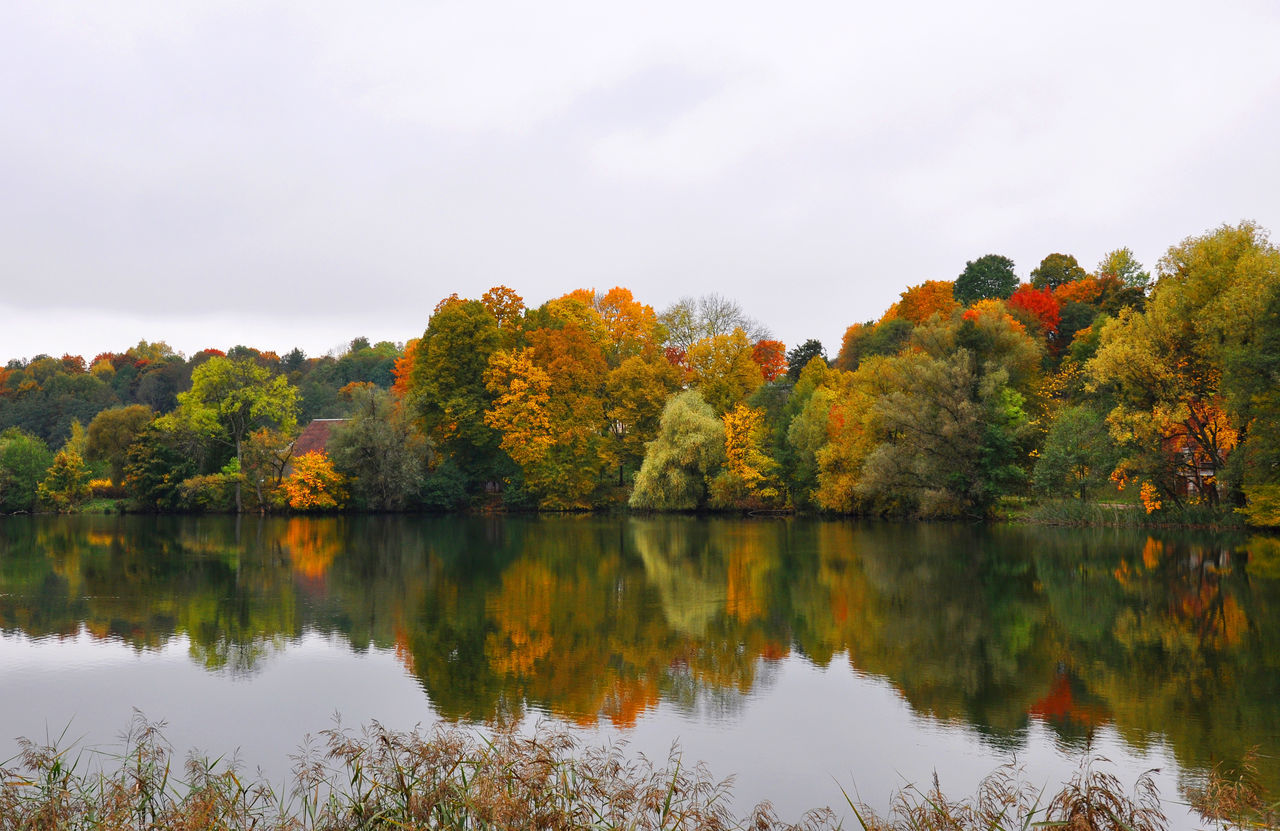 Lithuania in Autumn Autumn Autumn Colors Autumn Leaves Beauty In Nature Change Day Fall Forest Lake Leaf Lentvaris Lithuania Nature No People October Outdoors Reflection Scenics Sky Symetry Tranquil Scene Tranquility Tree Water Waterscape