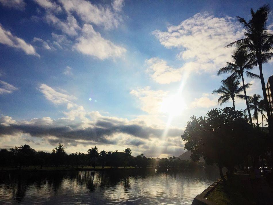 Evenings on the Ala Wai Hawaii Sunset Palm Trees Water Sun Skyline