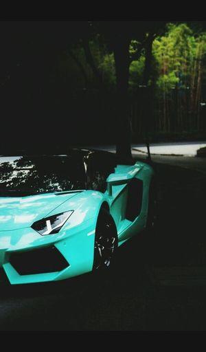 Lamborginidreams Ooh My Dior!!! Loveeeeeeeeee💜 Speed Limit I Love This Car