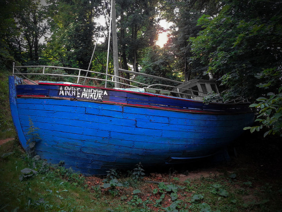 Auroras Ark Blue Rock Boat Boat In The Woods Nature Things You Find In The Woods  Wilhelminenberg Woods