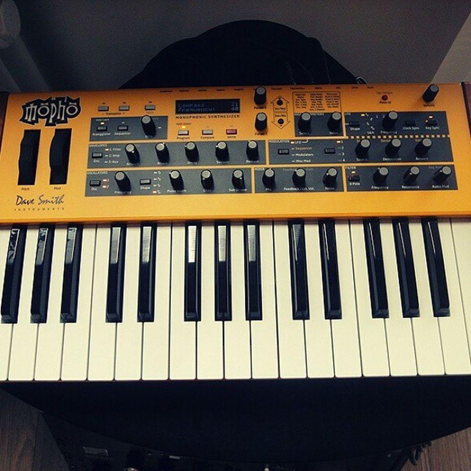 Hello there sexy. Newgear Studio Analog Dsi Davesmithinstruments Synths Bass