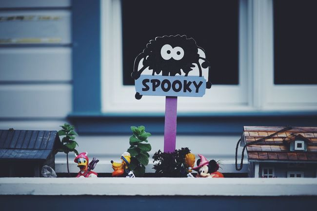 Halloween Spooky // Communication Close-up Information Sign Road Sign Freshness Display Retail  Flower Building Exterior Person Variation Focus On Foreground Symbol Sign Board Collection Day In Front Of