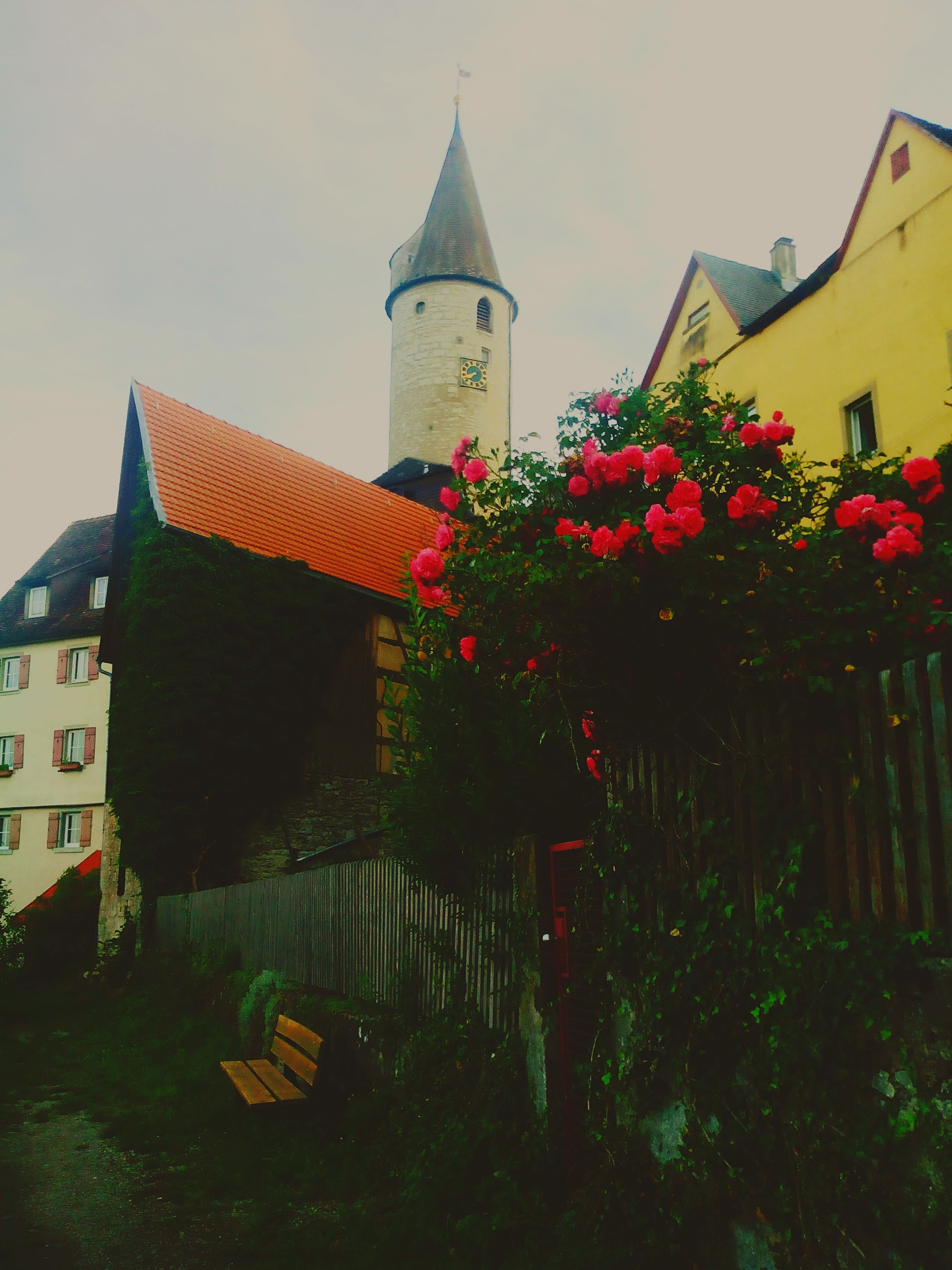 Kirchenberg Schloss Rosa Architecture Blumen