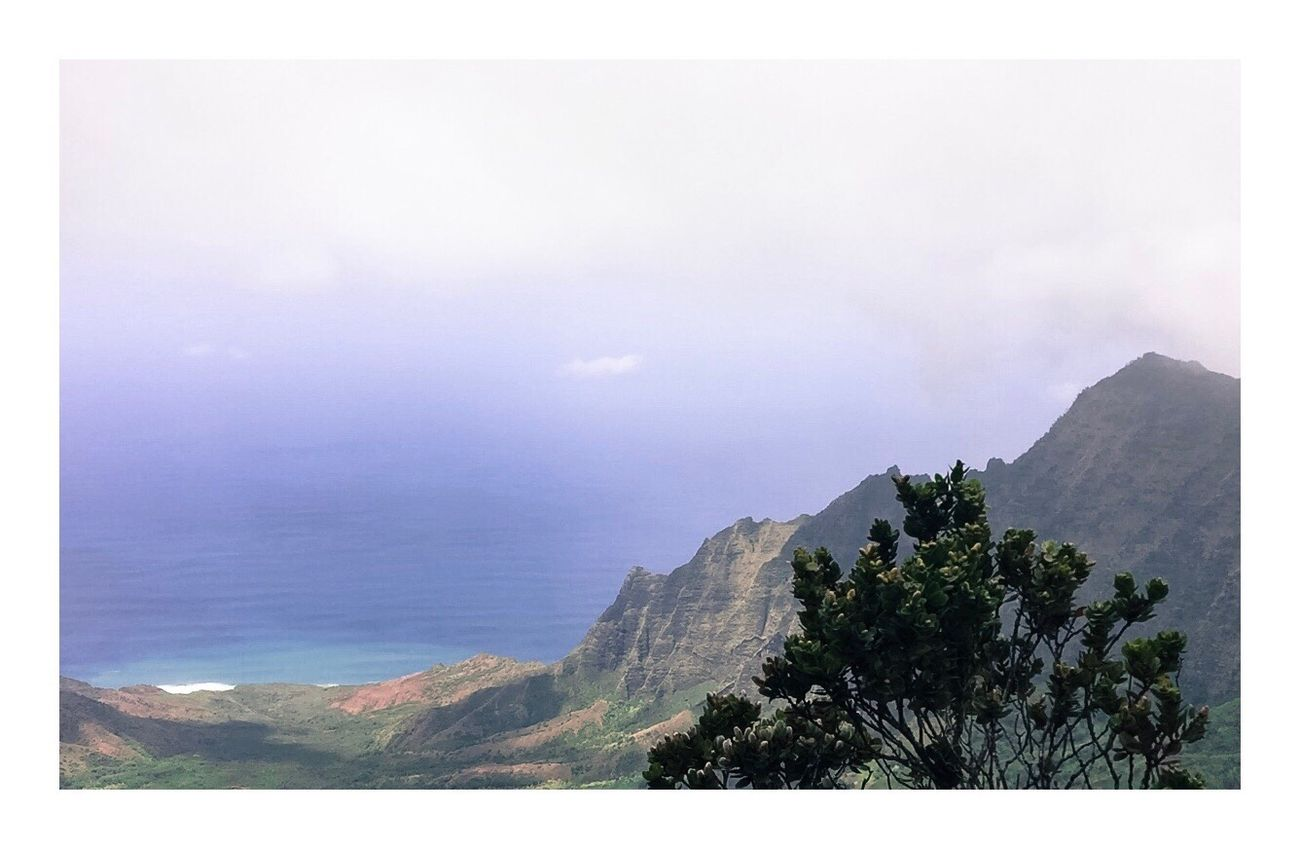 hiked up to overlook the waimea canyons. absoulutely unreal experience, and the views from the top were amazing