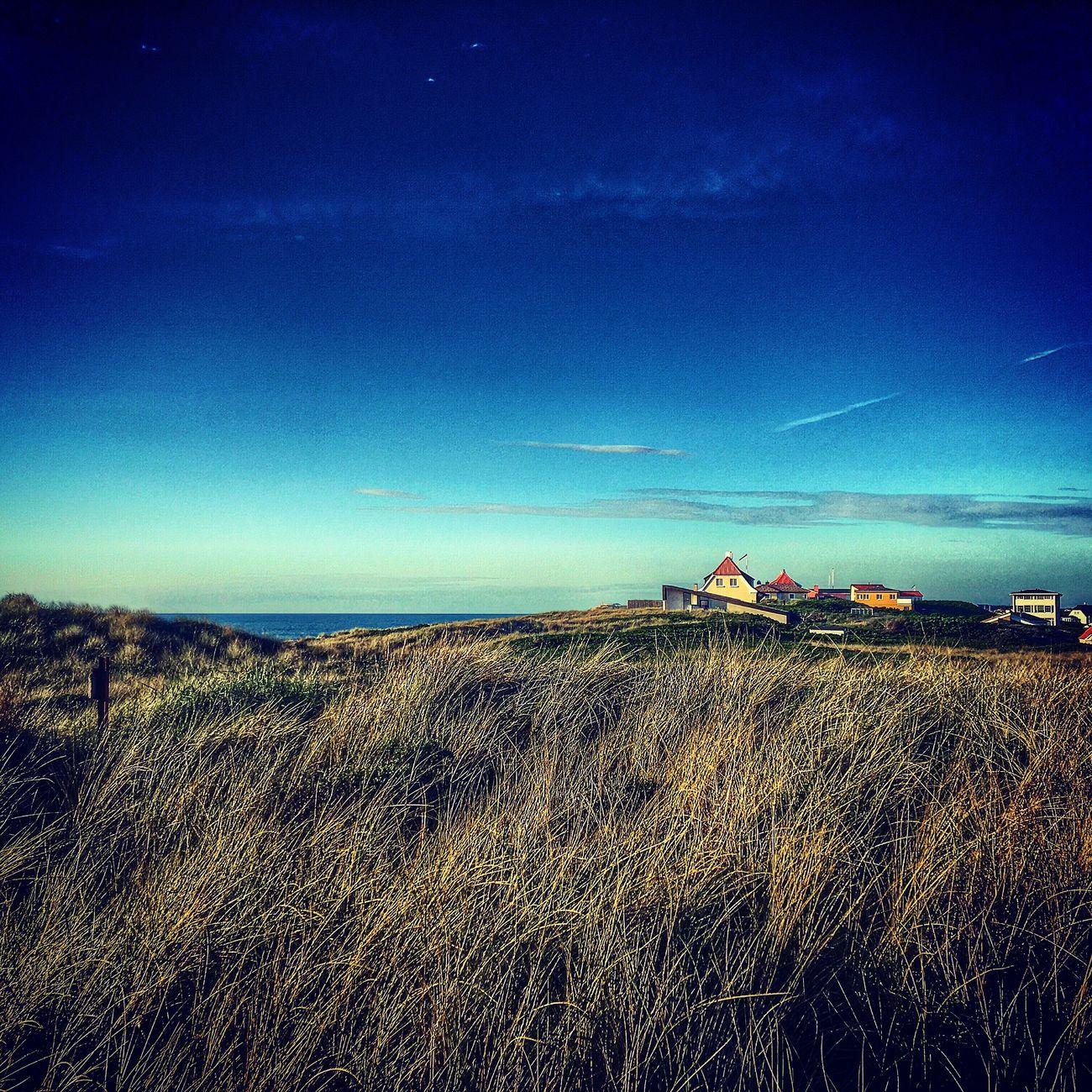 At the coast. Beach Coast Denmark Love ❤️