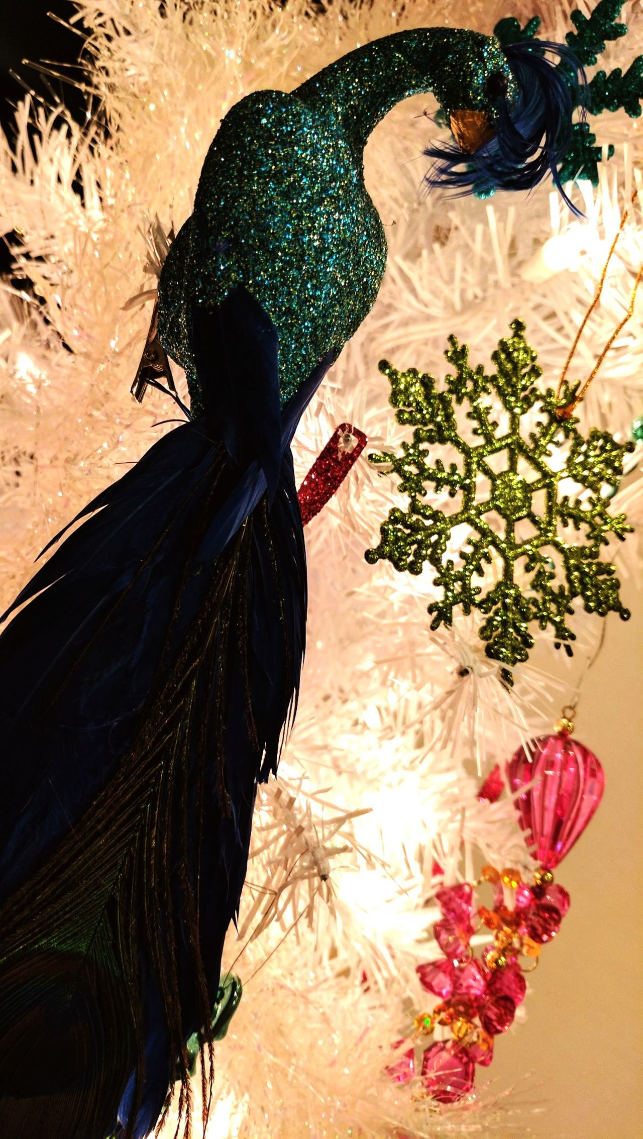 Peacock Tree EyeEmNewHere Beauty In Nature Paisley Peacock Feather Peacock Blue Christmas Decorations Christmas Time Christmas Tree