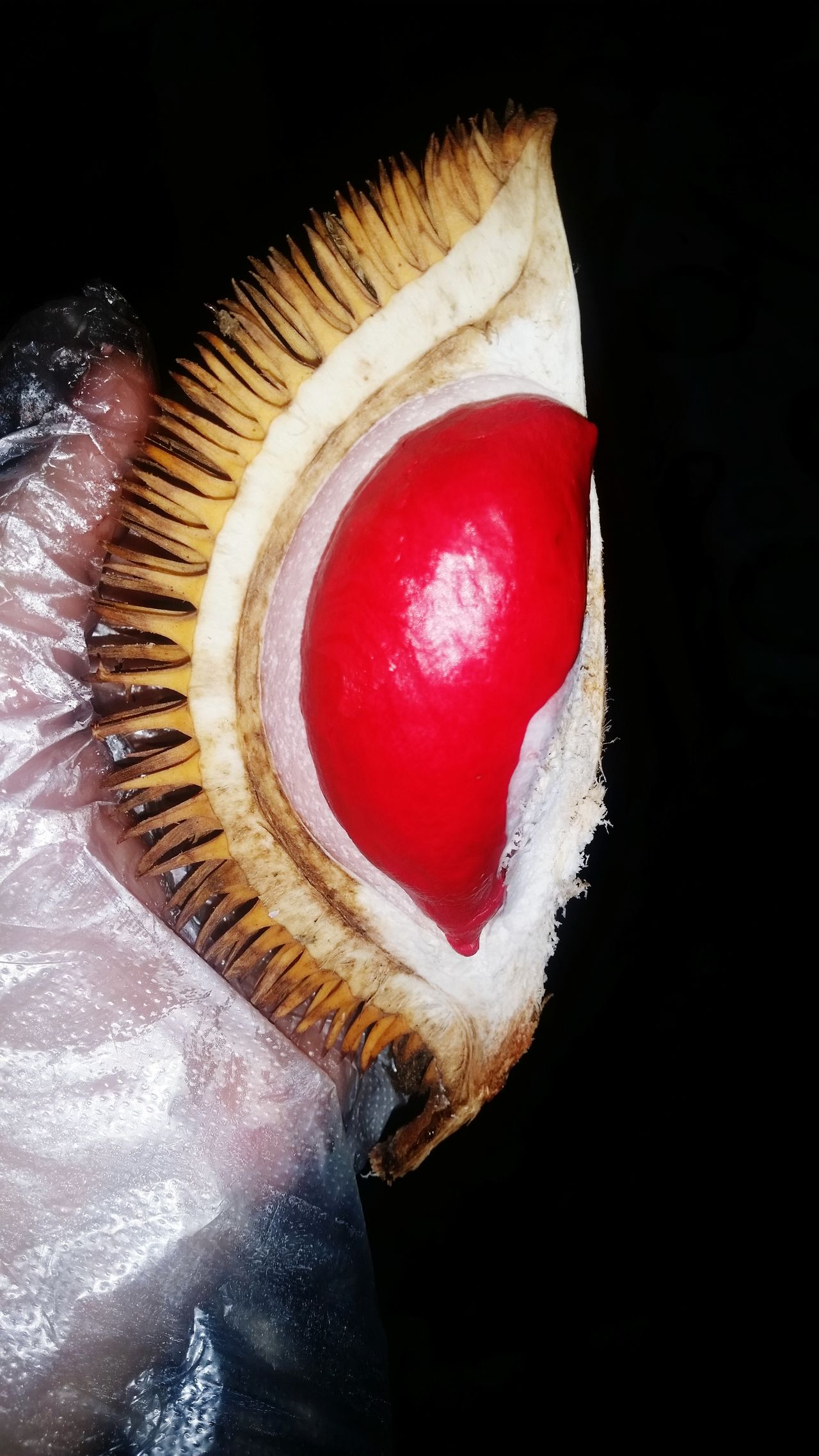 Durianmerah Alau Sabah Borneo Malaysia SabahanFood Durian Reddurian Red Tropical Fruits Rareitem Durianseasons Durian Fiesta EyeEm Best Shots - Nature Eye4photography  Coloroflife Colour Of Life Colour
