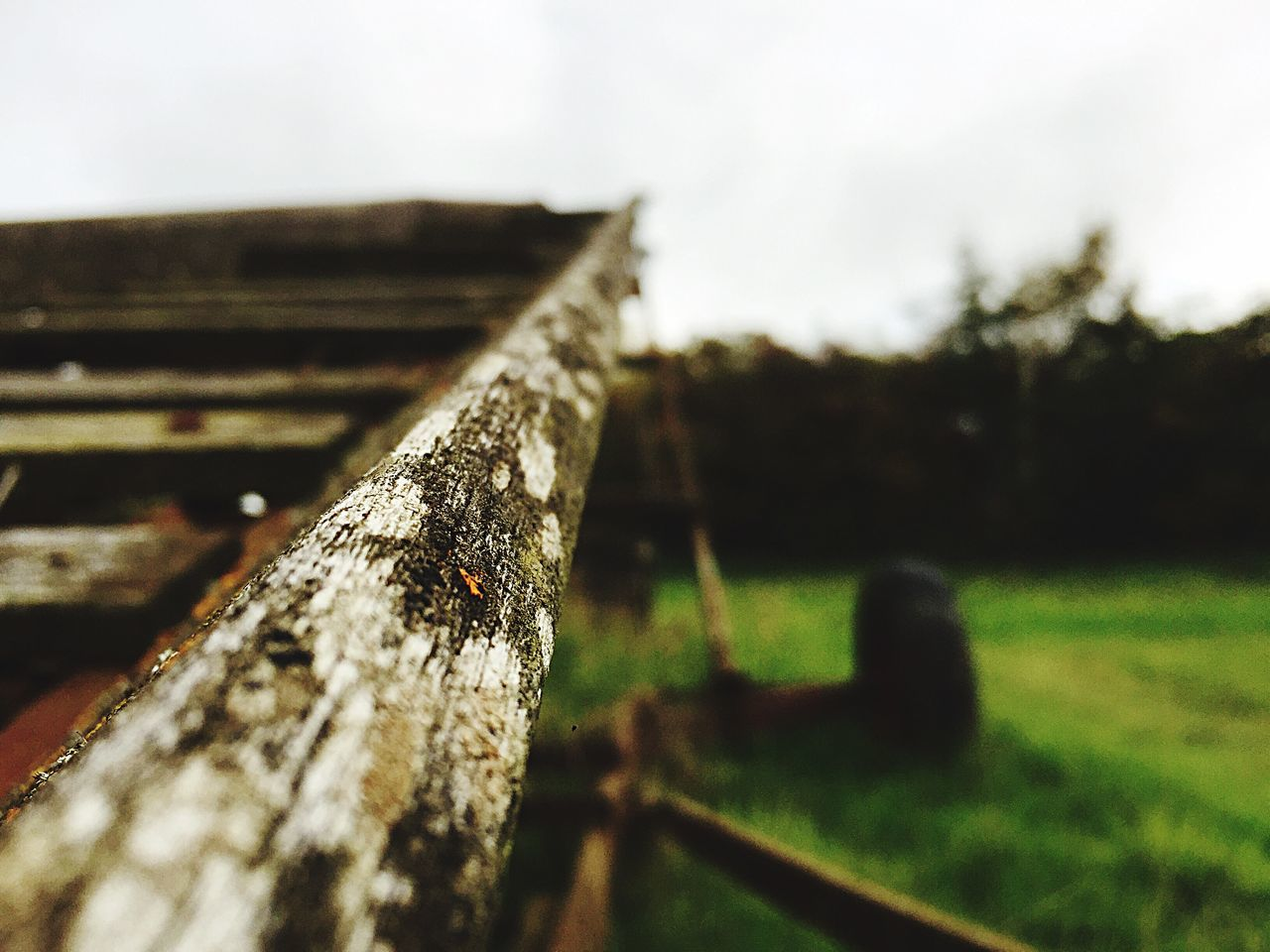 wood - material, no people, close-up, outdoors, day, focus on foreground, sky, tree, nature, grass