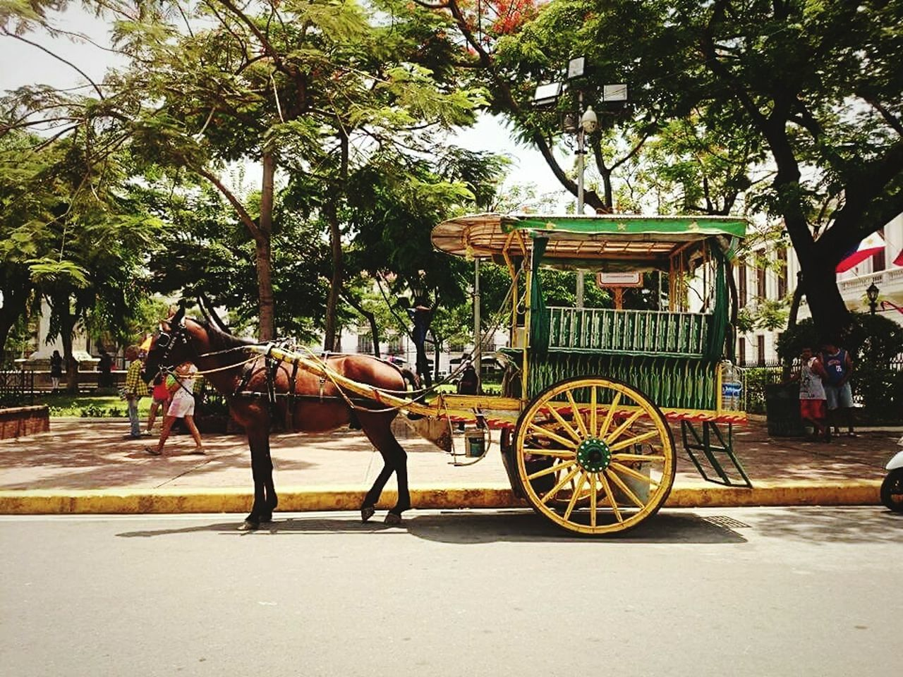 Fancy a ride? 🐴 Horse-drawn Carriage Kalesa Intramuros, Manila Manila, Philippines Eyeem Philippines EyeEm Manila Feel The Journey Showcase June On The Way Hidden Gems  Eyeemphoto