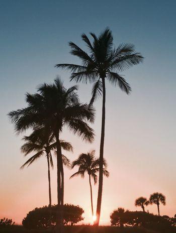 Sunshine Enjoying The Sun EyeEm Gallery EyeEm Nature Lover EyeEm Best Shots - Sunsets + Sunrise A Quiet Day At The Beach....