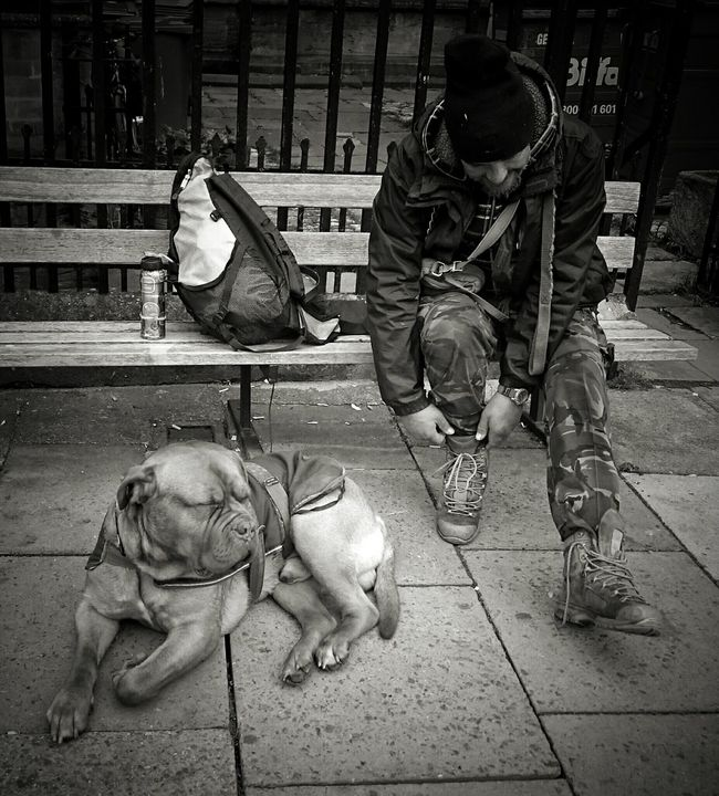 Onemanandhisdog People People Photography Dog DogLove Relaxing Frenchmastiff Animals Animal Photography Pets Taking Photos Cirencester Pavement Individuality Travellers Black And White Streetphotography Street Photography Streetphoto_bw The Street Photographer - 2016 EyeEm Awards