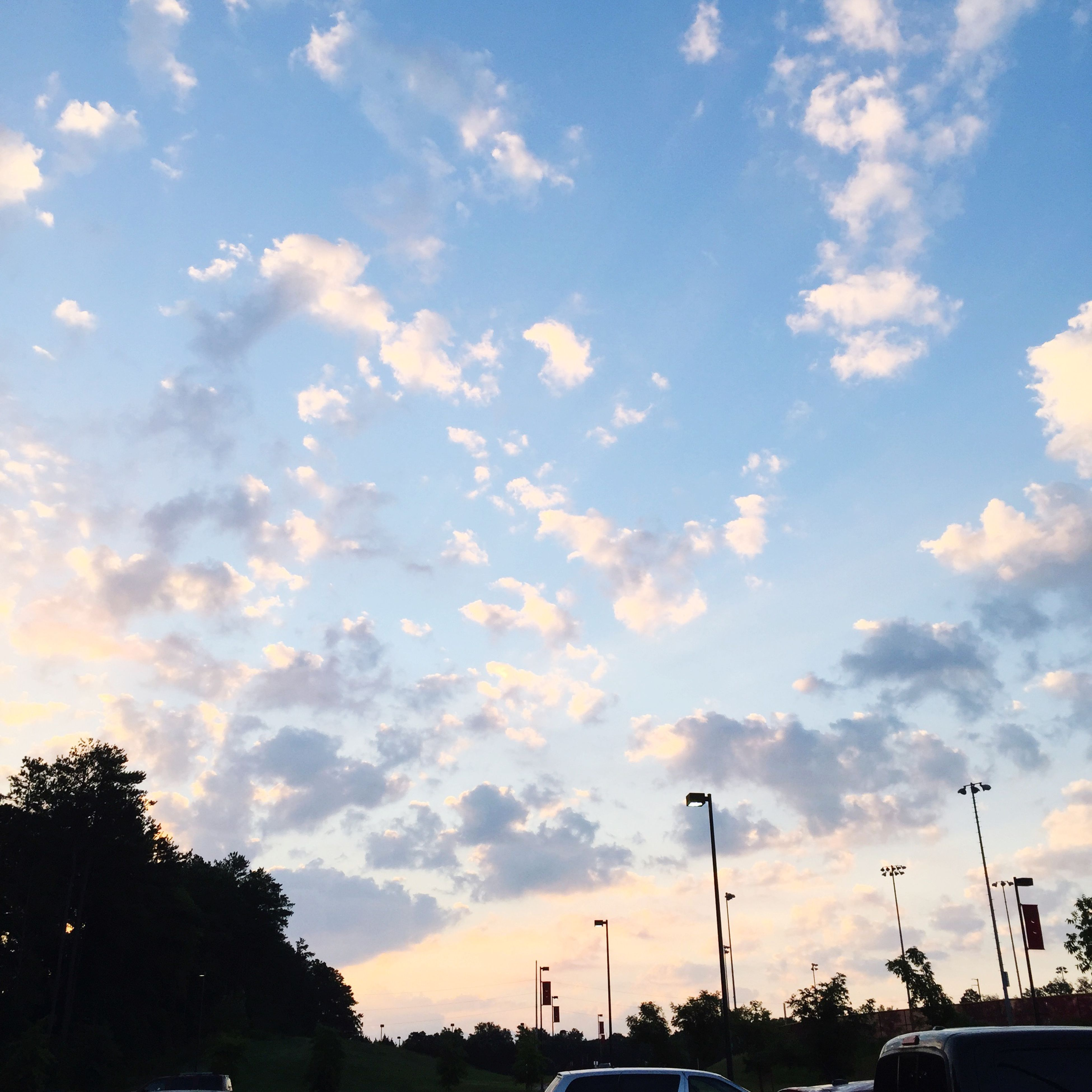 sky, silhouette, sunset, cloud - sky, tree, low angle view, beauty in nature, cloud, nature, scenics, tranquility, transportation, cloudy, car, land vehicle, tranquil scene, street light, outdoors, no people, mode of transport