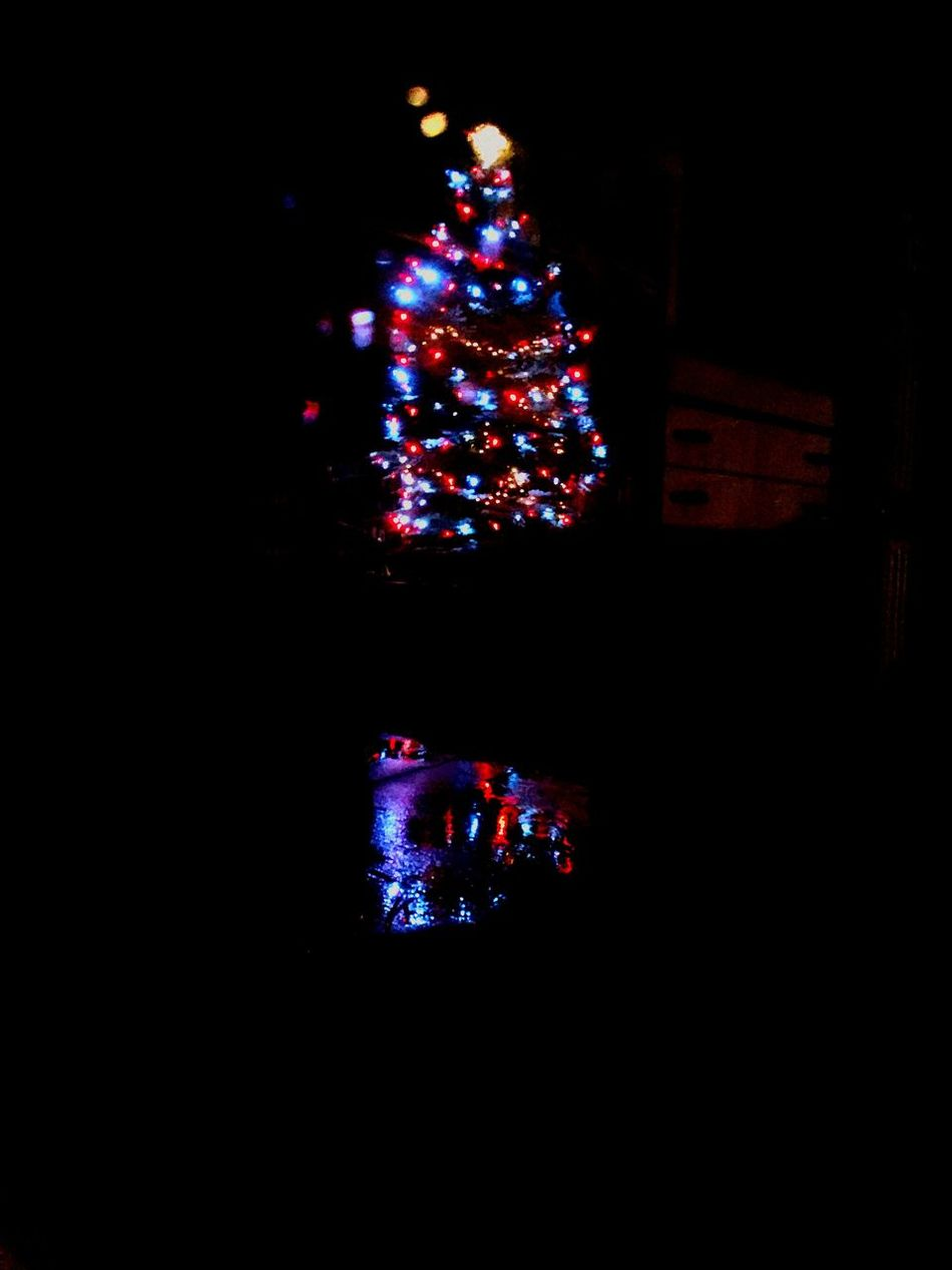 Christmas time already? Illuminated Christmas Decoration Christmas Night No People Tree Sky Christmas Tree Outdoors