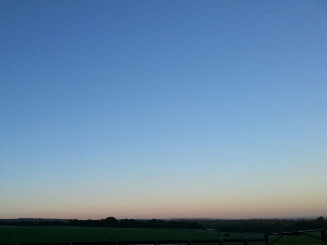 At Dawn  at Epsom Downs