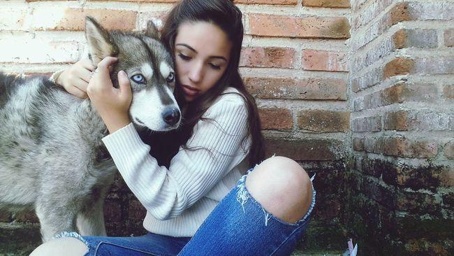 Eyeblue My Dog Moon 🌙