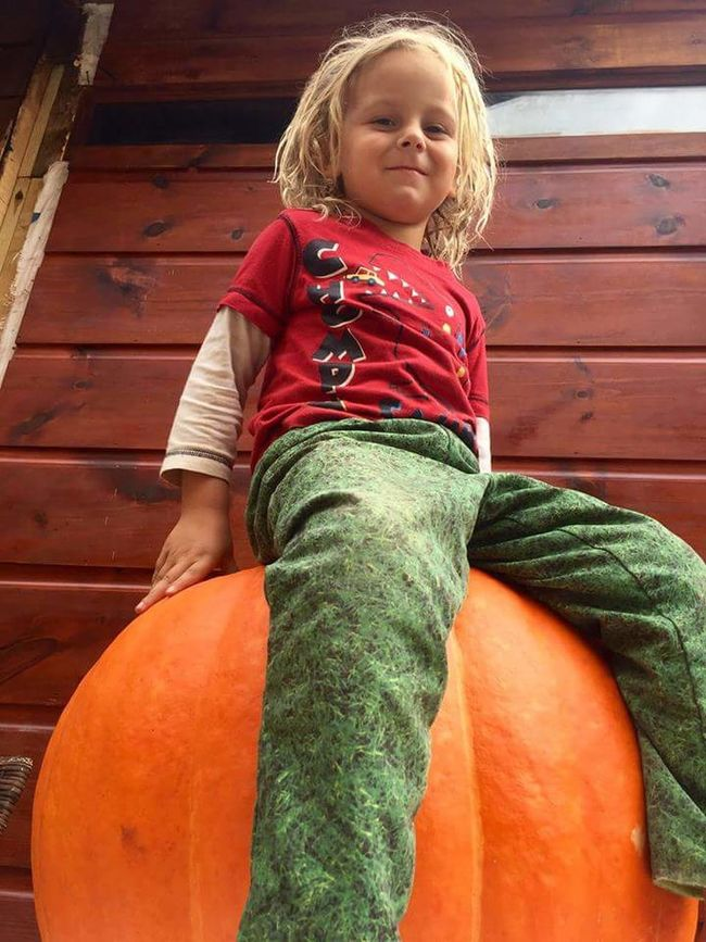 Pumpkin Patch Pumkinpicking🎃 Childhood Casual Clothing Lifestyles Cute Portrait Leisure Activity Warm Clothing Person Innocence Looking At Camera Relaxation Day Green Color Toddler  Autumn Colours Harvesting Time