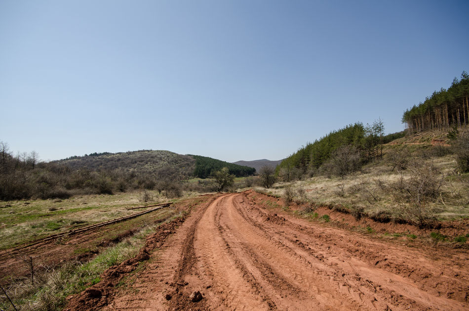 Clear Sky Deforestation Dirty Road Log Mud Road Outdoors Red Clay Red Earth Red Mud Road Sky Tree Tree Log Wood Cut
