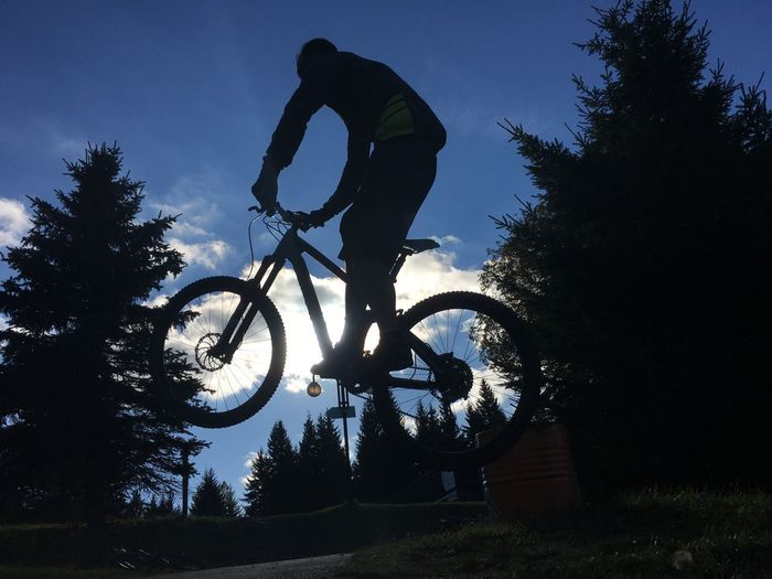 Silhouette Tree Real People Leisure Activity Bicycle Extreme Sports Skill  Adventure Men One Person Stunt Low Angle View Sport Lifestyles Outdoors Full Length Nature Sky Day Bmx Cycling The Week On EyeEm Eye4photography