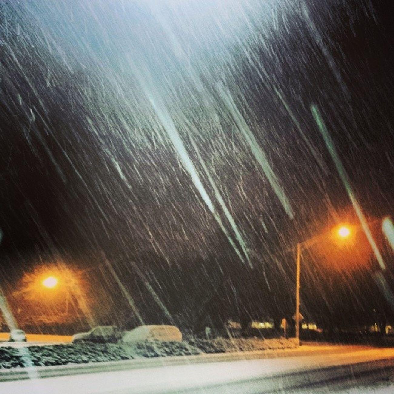 Sau Saumemories Snowpocalypse
